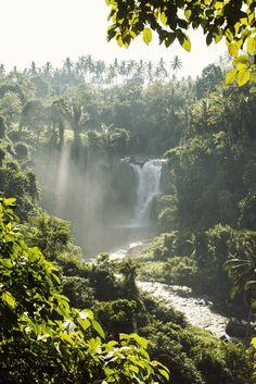 Cuyana   Bali Nature