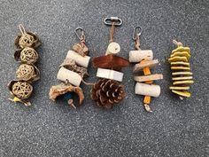 Diy Bunny Toys, Diy Parrot Toys, Diy Bird Toys, Diy Budgie Toys, Cockatiel Toys, Budgies, Parrots, Diy Chinchilla Toys, Diy Bird Cage