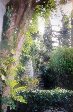 #magiaswiat #włochy #podróż #zwiedzanie #europa #blog #rzym #asyż #capri Capri, Plants, Blog, Europe, Blogging, Plant, Planets