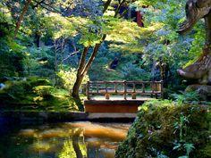 Shirakawa village, Japan02