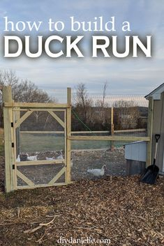 DIY Duck Run: How to Build a Predator Proof Space for your Ducks or Chickens - DIY Danielle® Backyard Ducks, Backyard Farming, Chickens Backyard, Pet Chickens, Backyard Birds, Raising Farm Animals, Raising Ducks, How To Raise Ducks, Duck Pens