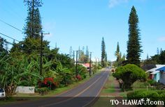 My home for a month. Lanai City - Lanai, Hawaii