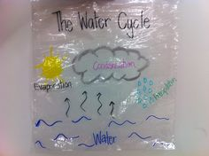 Water Cycle- Label and Tape to window- watch it all happen!!!!