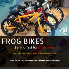 Last chance to get a Frog for Christmas! Hop on it.
