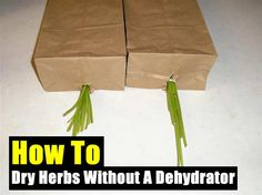 How To Dry Herbs Without A Dehydrator To Preserve Them For Future Use - SHTF, Emergency Preparedness, Survival Prepping, Homesteading Survival Prepping, Emergency Preparedness, Wilderness Survival, Clean Eating Diet Plan, Dehydrator Recipes, Medicinal Herbs, Preserving Food, Drying Herbs, Food Storage