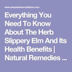 Natural Remedies Easy Natural Solutions For Common Illnesses and Natural Health Natural Essential Oils, Natural Oils, Natural Health, Healthy Tips, Healthy Recipes, Green Magic, Slippery Elm, Natural Solutions, Alternative Health