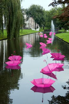 This is just an example to create an element of surprise in your garden - pink umbrellas.