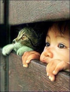 Cute kids and cats- 26 pics Animals For Kids, Animals And Pets, Baby Animals, Funny Animals, Cute Animals, Animals Planet, Cute Kids, Cute Babies, Animal Pictures
