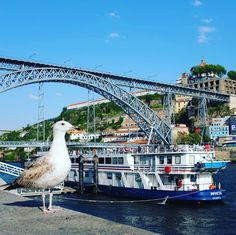 The Dom Luís I bridge is a double-deck metal arch bridge that spans the River Douro between the cities of Porto and Villa Nova de Gaia in Portugal. At its construction its 172 metres (564ft) span was the longest in the world .