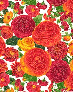 Arcadia - Fiery Flower Garden - White/Gold