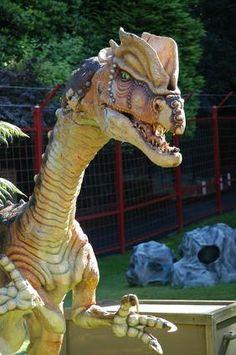 Dinosaur Museums in Utah. Some look really cool. :)