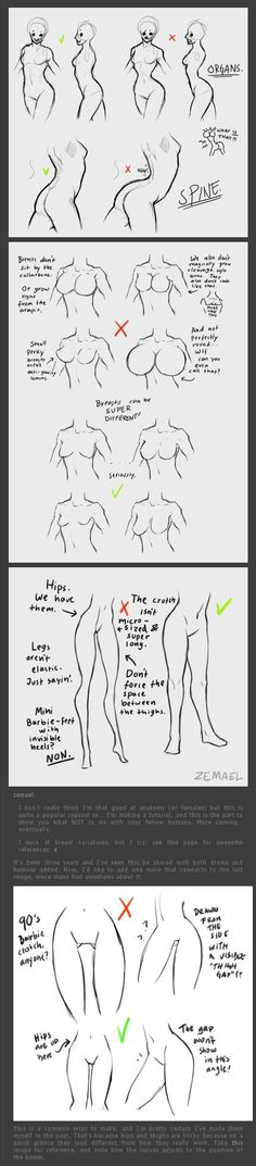 drawing the back/breasts/hips Bodies Proportions Drawing Skills, Drawing Poses, Drawing Techniques, Drawing Tips, Drawing Reference, Drawing Sketches, Art Drawings, Sketching, Anatomy Drawing