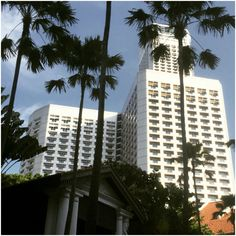 From the #RafflesHotel, gazing up at the #FairmontSingapore, and behind it, #SwissotelTheStamford, I am reminded of many, wonderful memories, along with the beginning of an epic #lovestory! #architecture #awesome #beachroad #bluesky #buildings #downtown #downtownsingapore #hotels #mytravels #sightseeing #singapore #singaporetrip #travel #traveller #travelling