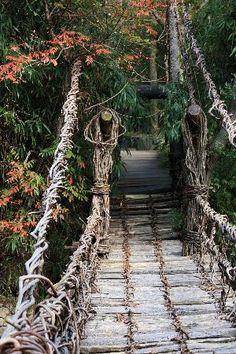 Small vine bridge at Shikoku Mura