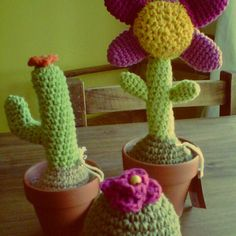 crochê - cactus