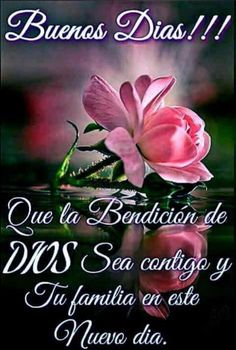 Pin by eddy mendoza on días Dear Friend Quotes, Morning Quotes For Friends, Good Day Quotes, Good Morning Quotes, Special Good Morning, Good Morning Funny, Good Morning Good Night, Good Morning Messages, Good Morning Greetings