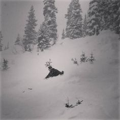 Too good to stop today and coming down too hard anyway.  Here's Ben Morello late in the day on Last Steep. #skiingislife #skiing #ski #crestedbutte #coloradolife #powder #powday #burythebutte #atmosphericriver  #worldslasttelemarkskier #dumping #visitgcb #notgettingmuchworkdone