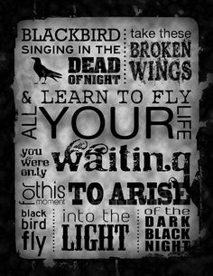 I heart the Beatles. {The Beatles Blackbird Subway Art} Beatles Lyrics, Beatles Love, Music Lyrics, Beatles Quotes, Beatles Art, Music Love, Music Is Life, Love Songs, Einstein