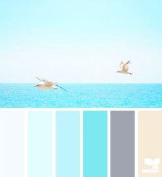 Design Seeds celebrate colors found in nature and the aesthetic of purposeful living. Colour Pallette, Color Palate, Colour Schemes, Color Combos, Beach Color Palettes, Design Seeds, Colour Board, Color Swatches, My New Room