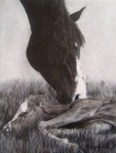 Shannon Fleury wonderful artist