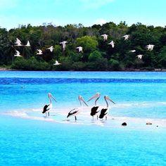 Pantai Ngurtafur, Maluku Tenggara, Indonesia.
