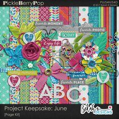 Project Keepsake: June By Bekah E Designs