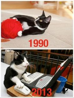 """The """"Good Old Kitty Days"""" vs. The """"Computer Kitty Age!""""  Giggles"""