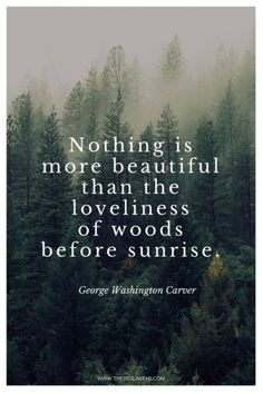 Nature quote wilderness quotes, quotes about nature, love nature quotes New Quotes, Quotes To Live By, Funny Quotes, Inspirational Quotes, Inspire Quotes, Change Quotes, Faith Quotes, Girl Quotes, Woman Quotes