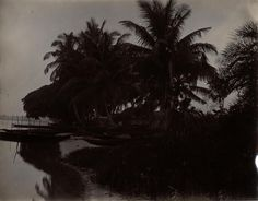 Beach at Apapa Shewing Canoes & House. Also Cocoanut Trees | by Thomas Fisher Rare Book Library, UofT