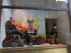 Anthropologie sea world windows, New York