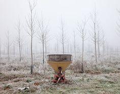 Lot et Garonne / Bruch - 2015 ©Alain Etchepare