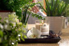 Vanille Bourbon - #LaBelleMeche #BougieParfumee #ScentedCandle #lifestyle - Photographe : Blaise Arnold - Production : La Fabrique de Mai