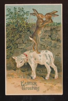 Cute Bunny RABBITS Kiss with Lamb Antique Embossed Easter Postcard-bbb508