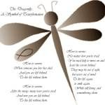 """The Dragonfly... A Symbol of Transformation"" by kdnaturals"