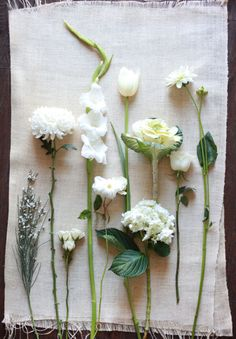 theme-wedding-white-on-white-pure-only-idea-9