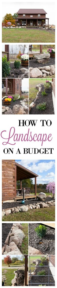 Tips on how to Landscape on a Budget.