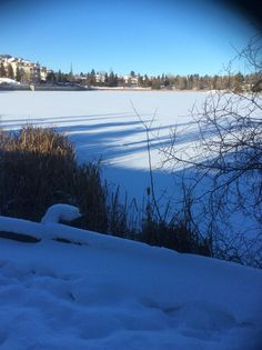 Beaumaris Lake, Edmonton, Alberta.