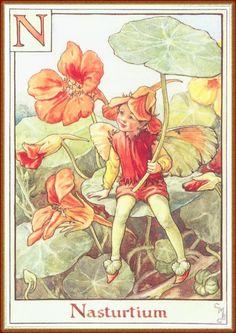 Fairies and elves by Cicely Mary Barker #alphabet #magic #MinaVaan