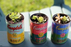 Campbell's soup can turned into planters #DIY
