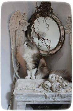 Méas Vintage: Sternenzeit und ein gothisches Fenster Hobbit, Meas Vintage, Dogs, Shabby Chic, Cottage, Animals, Window, Animaux, Doggies
