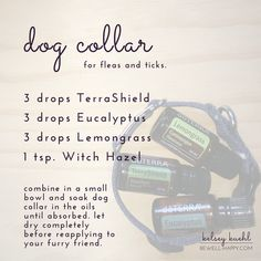 Flea and Tick dog collar DIY. Five Essential Oils to Ward off Mosquitos, Ticks and Other Insects. Learn how to make a mosquito and tick repellent with dōTERRA essential oils. Safe for humans of all ages and dogs. DIY Homemade Bug Spray for ants, chiggers, fleas, flies, gnats, lice, mosquitos, spiders and ticks.