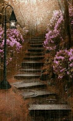 Rain came down as I continued on my path, the dark gloomy day darkened my own path and I began to wonder why I didn't stay where I was.  Warm and dry.