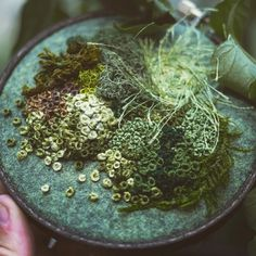 TOES IN THE MOSS: Moss embroidery for the amazing ceramicists @earthandbaker, Emma Mattson