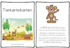 1000 images about j2 k7 animals demonstratives on