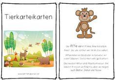 Steckbriefe, Lesetexte, Informationen über 60 häufige Tiere für die 1. bis 3. Klasse.