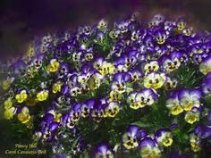 Carol Cavalaris Paintings - Bing Images