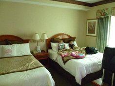 Latest Posts Under: Bedroom t.v