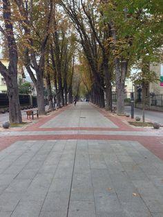 Camino de Santiago - Vitoria Gastiez