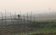 https://flic.kr/p/NaZSDn | foggy dawn | ফুটেছে হেমন্ত শিশিরের ডিম  শী্তের সাম্পান ভীড়েছে তীরে হেমন্তের সাগর পেরিয়ে গ্রাম জনপদে লেগেছে দোলা ঢেকেছে জমিন কুয়াশার চাদরে  আমার ক্যামেরা বরন করেছে আজি ভীষন আদরে ............... the bridge of winter ........... 19 july 2016 - munshigonj , bangladesh  Copyright :Abdul Malek Babul FBPS . Cell:( +880) 01715298747 & 01837805350 E mail : babul.photopassion@gmail.com bimboo.babul@yahoo.com www.flickr.com/photos/55321771@N08