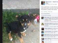 Bowie County Pet Swap Shop